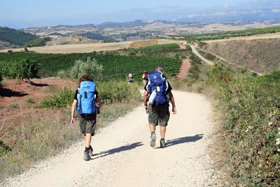 En chemin vers Estella