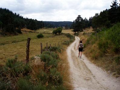 Vers le Sauvage, voie du Puy